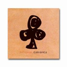 MATERIAL/ CASIOPEA