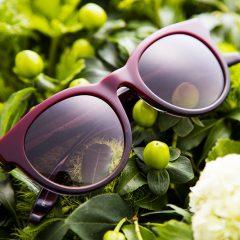 eyewear 06-01