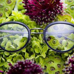 eyewear 09