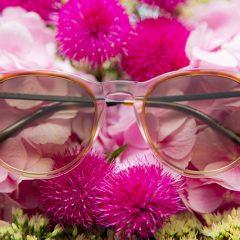 eyewear 11