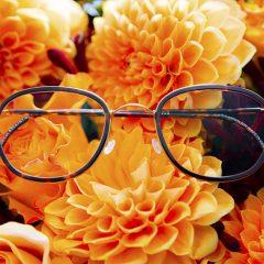 eyewear 14