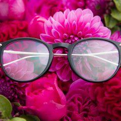 eyewear 15