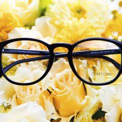 eyewear 16