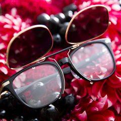 eyewear 17-02